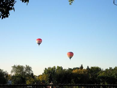 hot-air-balloons-small.jpg